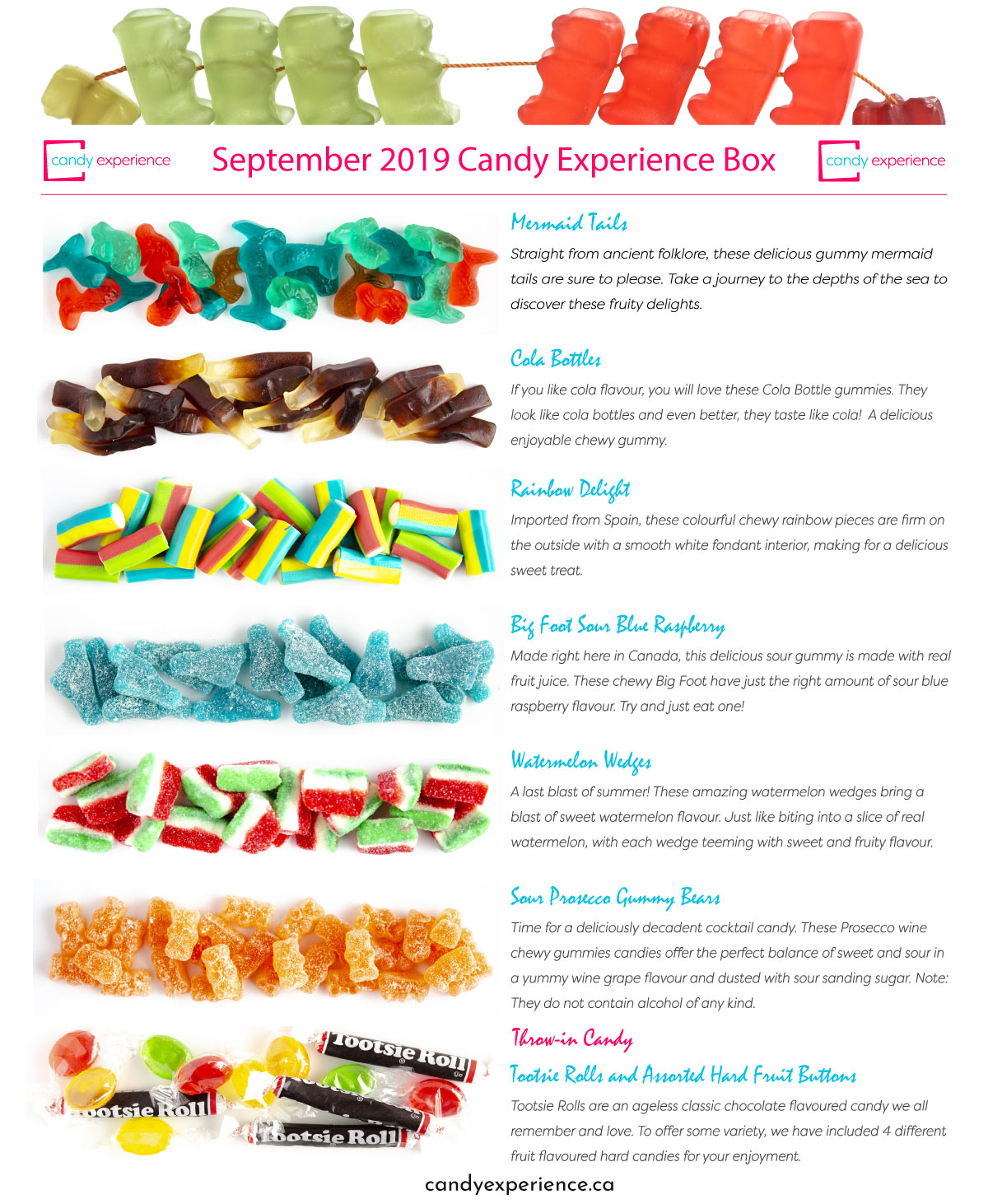 Septemver 2019 Candy Subscription Box